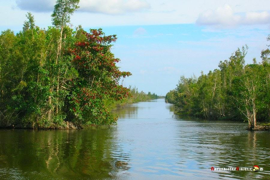 Laguna del Tesoro, Cuba
