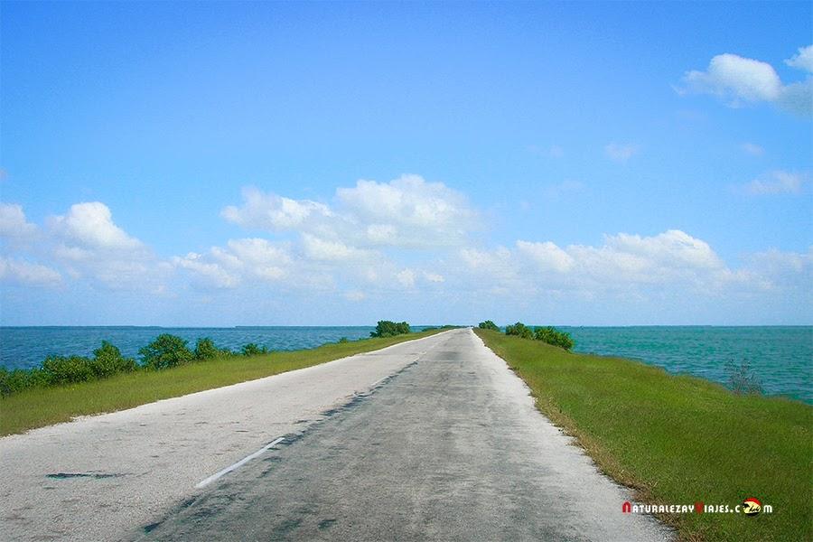 Camino a Cayo Coco y Cayo Guillermo, Cuba