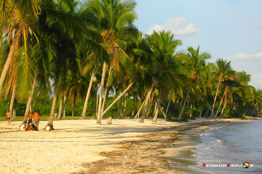 Playa en Cuba