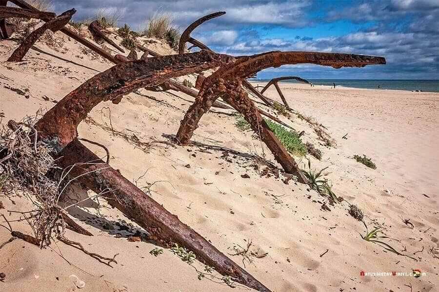 Playa Barril, un imprescindible que ver en el Algarve