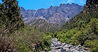 Isla La Palma. Parque Nacional la Caldera de Taburiente