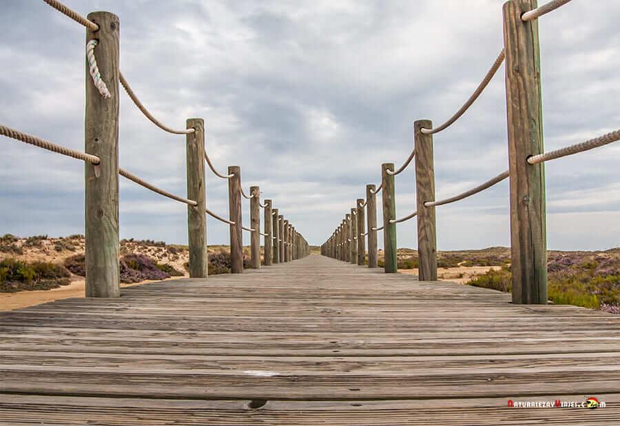 Isla Culatra, Algarve