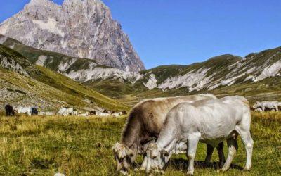 Parque Nacional del Gran Sasso y Montes de la Laga, Italia