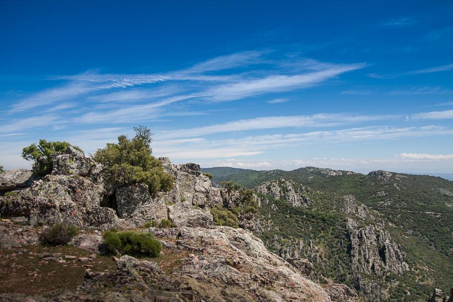 Sierra Morena, naturaleza andaluza en estado puro
