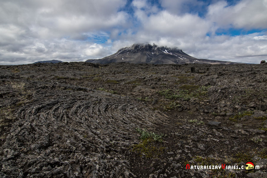 Campos de lava junto a Herdubreid en las Highlands, Islandia