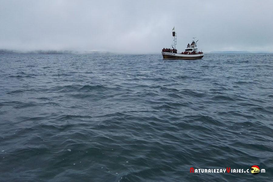 Barco para avistamiento de ballenas en Húsavík, Islandia