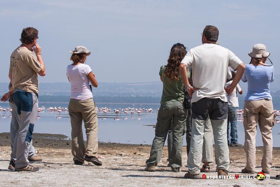Birdwatching en Nakuru, Kenia
