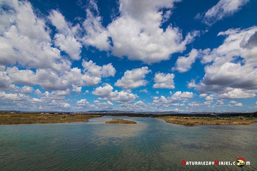 Paseo en barco Ría Formosa, Algarve