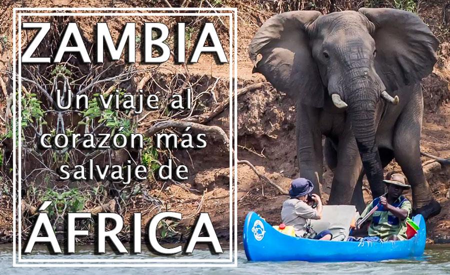 Próximo destino: Zambia, viaje al corazón más salvaje de África