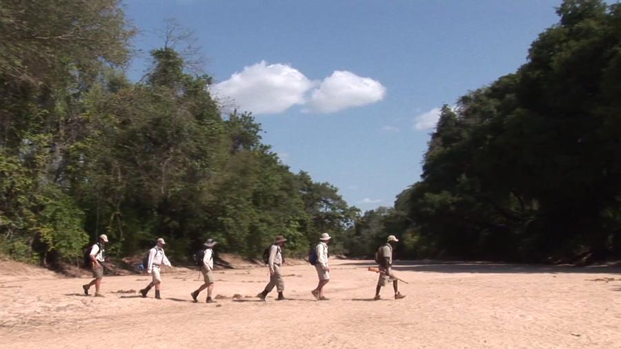 Walking safari, Zambia