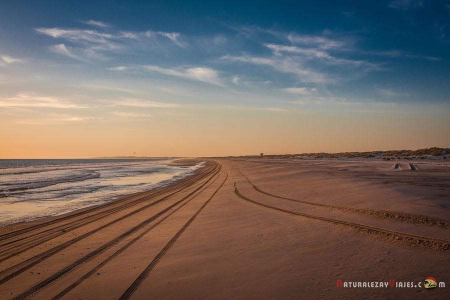 Playa Castilla, Doñana, Huelva