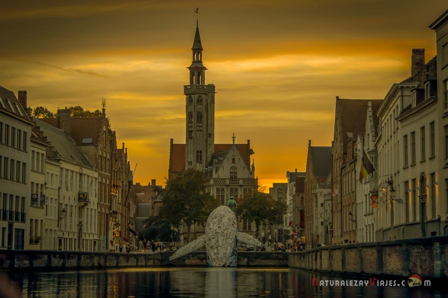 Qué ver y hacer en Brujas (Flandes) en un día
