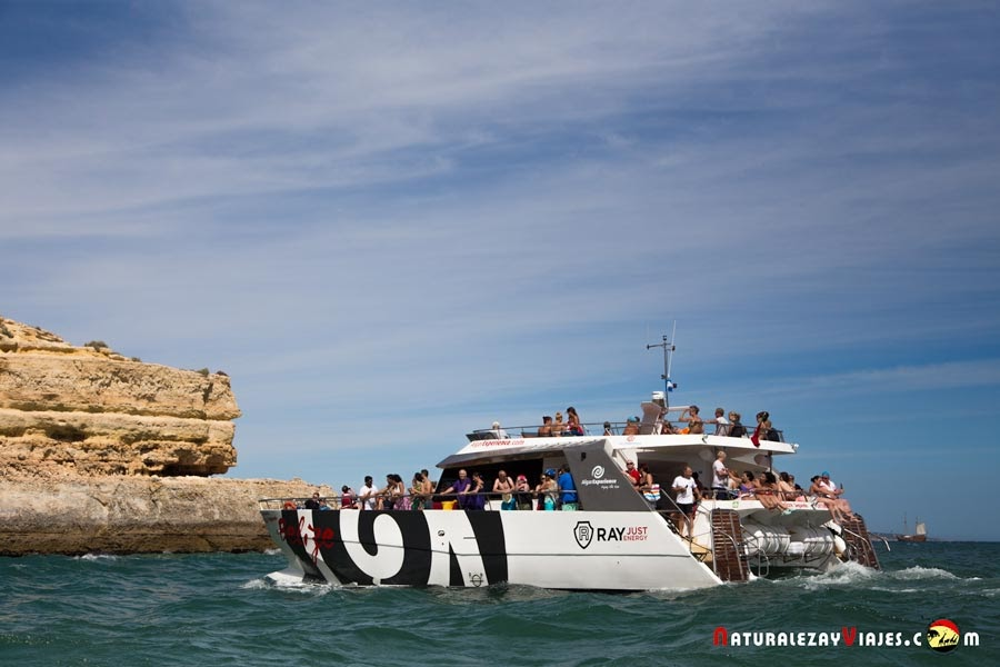 Excursión barco en Algarve