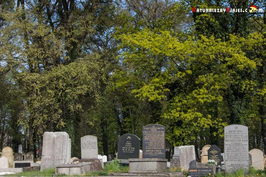 Cementerio Nuevo en Kazimierz, Cracovia