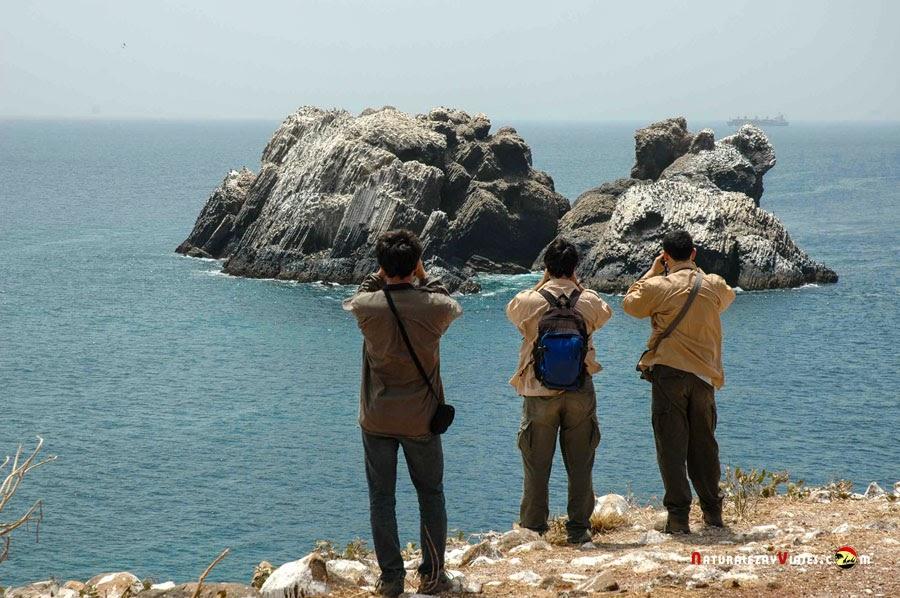 Parque Nacional Isla de la Madeleine, Senegal