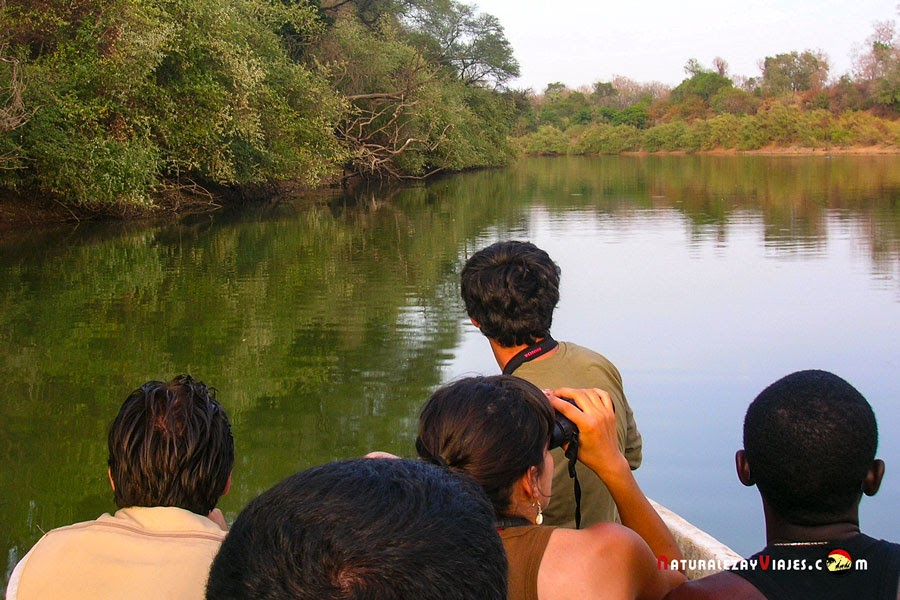 Paseo en barca por el río Gambia