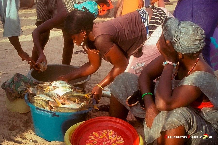 Lamin lodge, Gambia