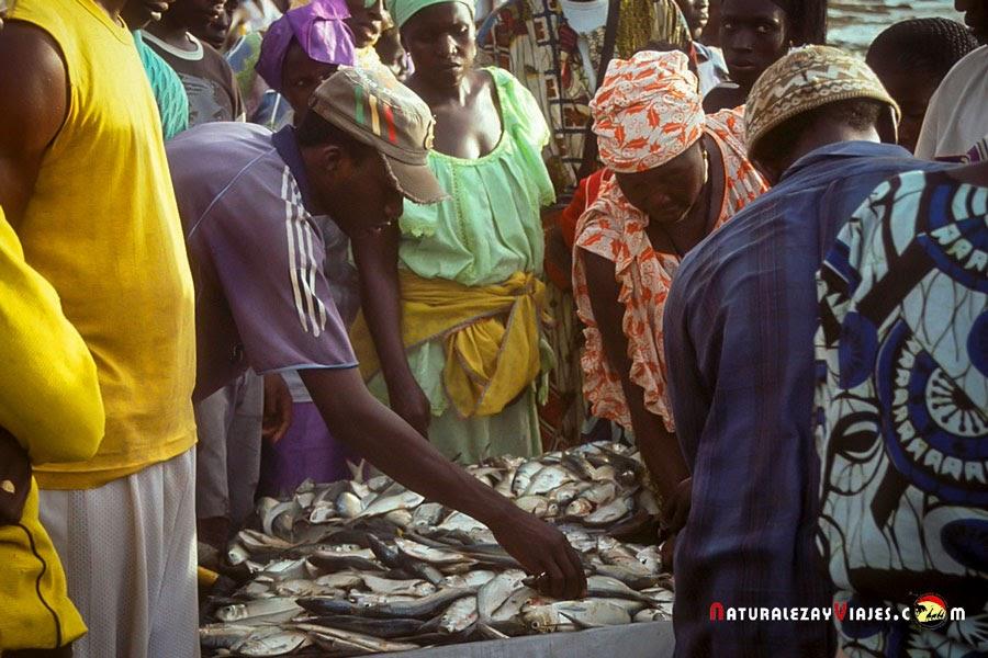 Tanji, Gambia