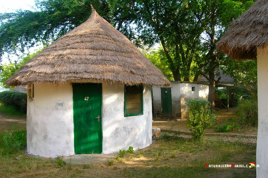 Tendaba camp, Gambia