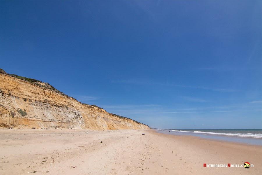 Playas para ver en Andalucía