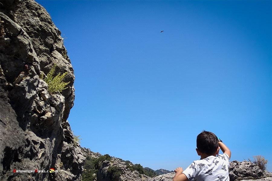 10 planes viajar con nisños a la Sierra de Cazorla