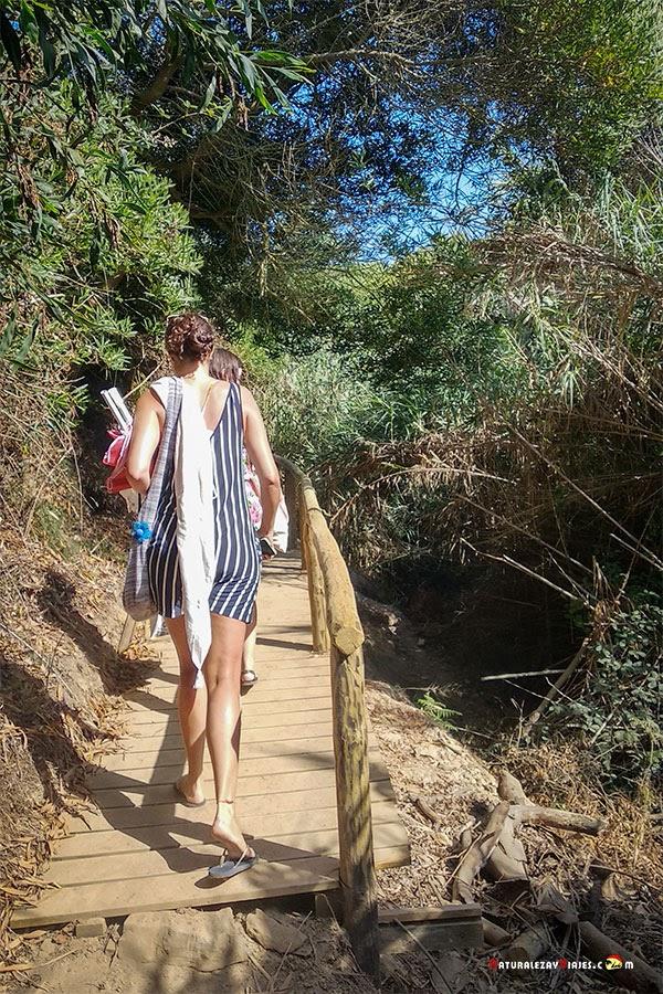 Praia Amalia