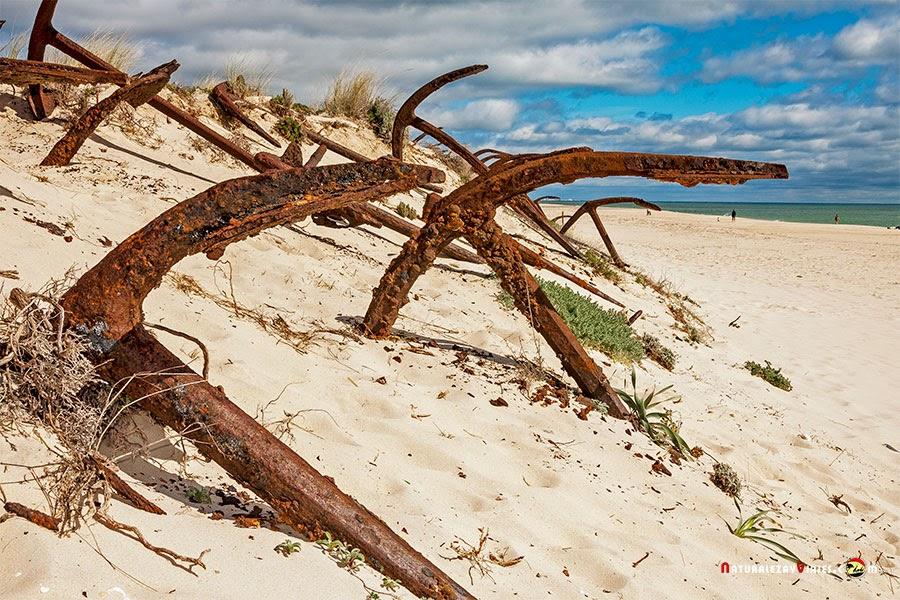 Playa del Barril, Algarve
