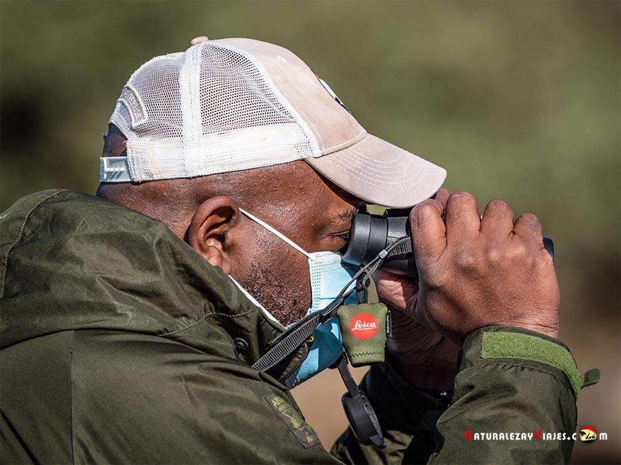 Birdwatcher en Andújar