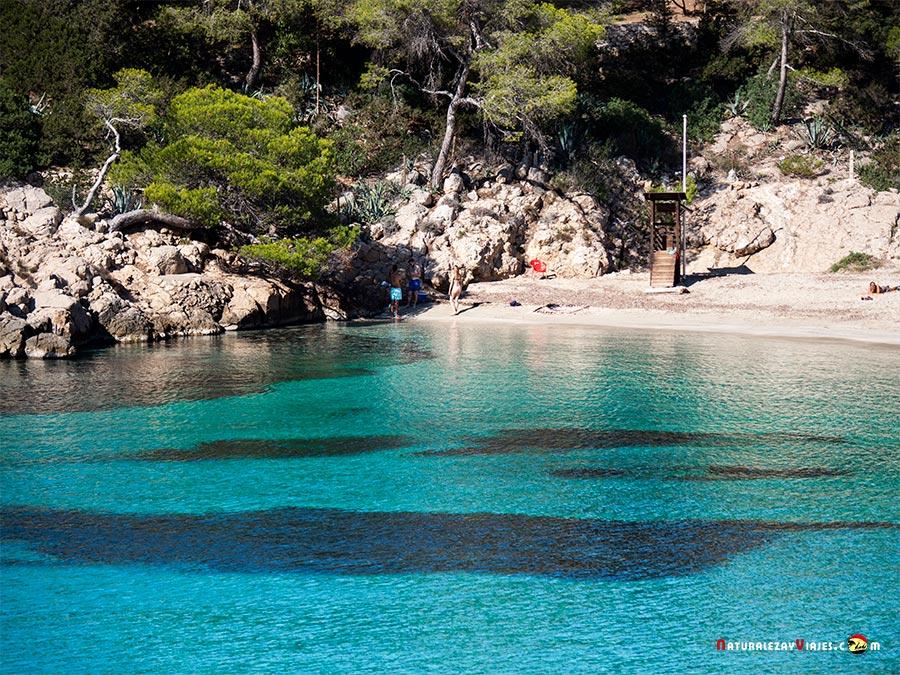 Cala Saladeta, Ibiza, entre las mejores playas y calas de Ibiza