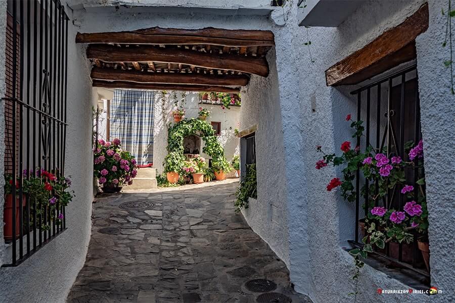 Bubión Alpujarra Granada
