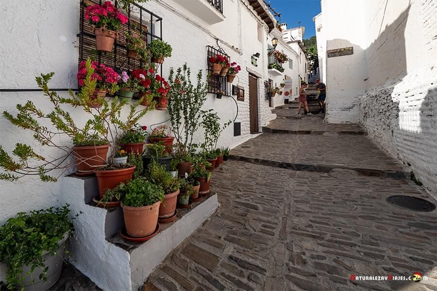 Calle de Capileira, Alpujarra
