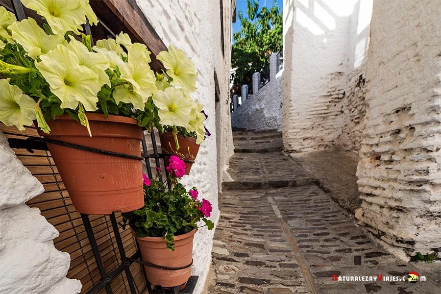 Qué visitar en Capileira, uno de los pueblos más bonitos de la Alpujarra de Granada