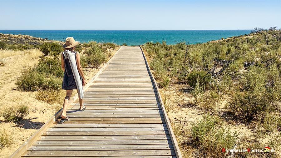 Cuesta Maneli, Doñana