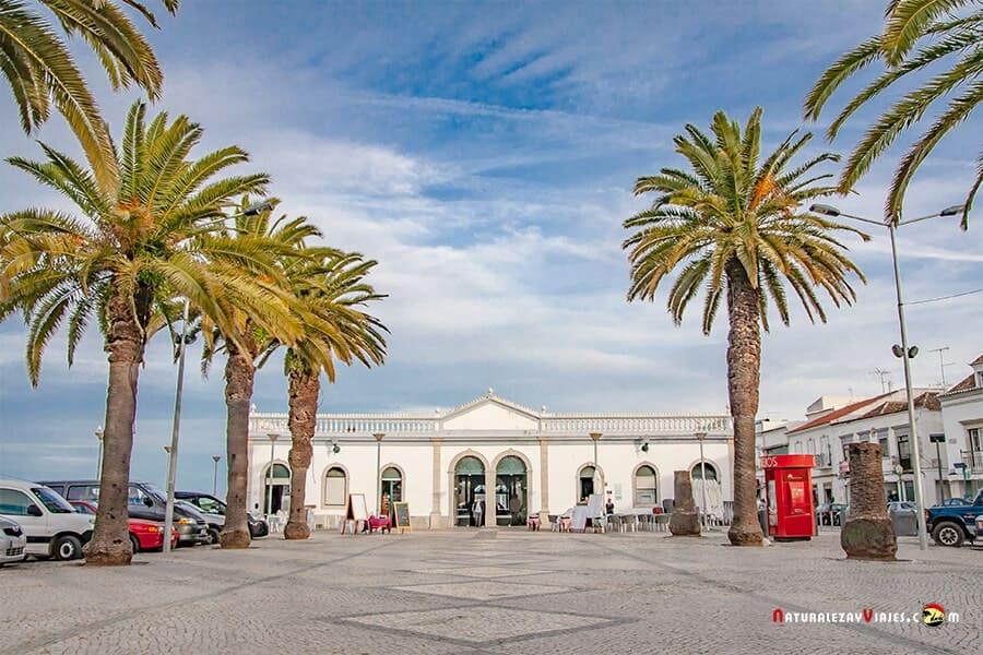Mercado Tavira, otro imprescindible que ver en Algarve