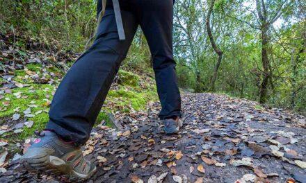 Las 4 mejores rutas de senderismo en la Sierra de Grazalema