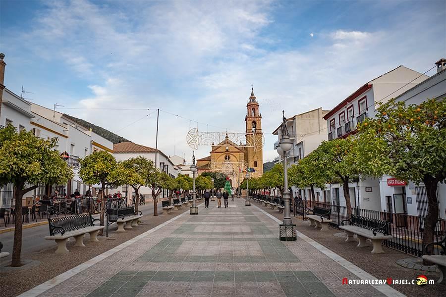 Algodonales, Cádiz