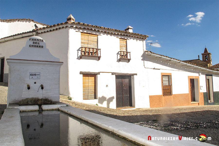 Cataño del Robledo, sierra de Huelva