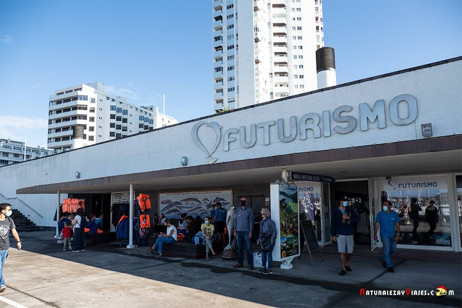 Futurismo para ver ballenas en Azores
