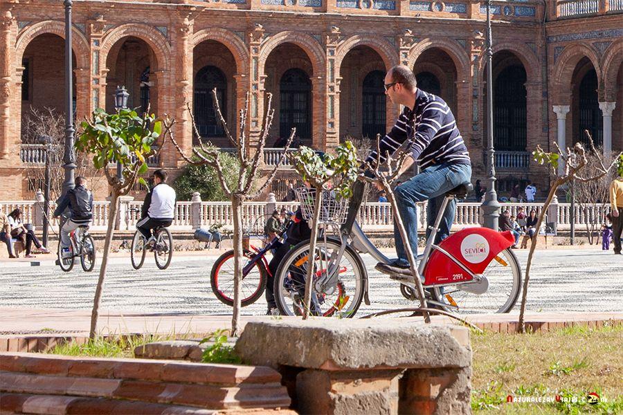 Alquiler de bici
